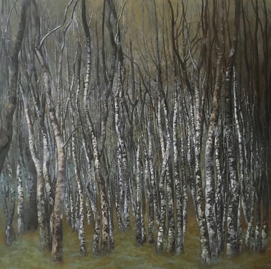 Pădure de mesteceni | Ulei pe pânză | 90 x 90 cm | 2018 | 1200 Euro